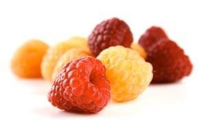 kantinen3-15-råvaren-hindbær